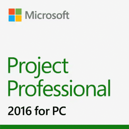 Microsoft Project Professional 2018 license