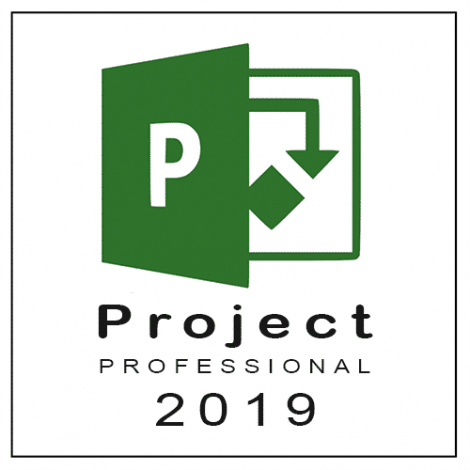 buy project pro 2019 online
